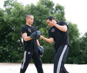 Jeet Kune Do Techniques